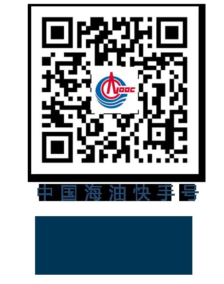 中国海油发布2020年成绩单