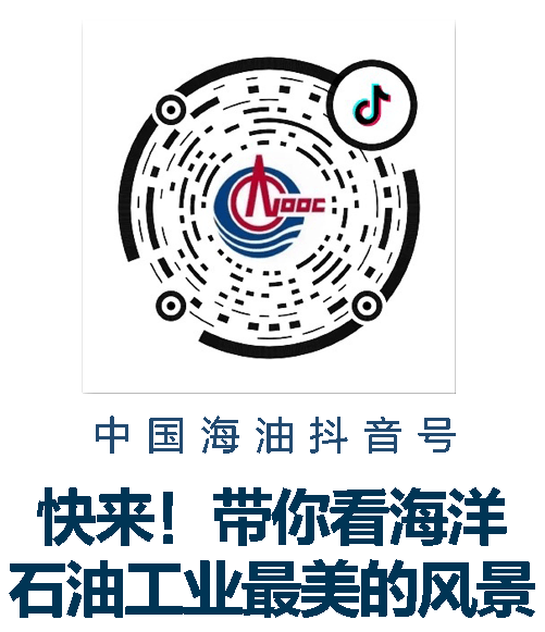 起航!中国海油首个岸电项目组块陆地建造完工