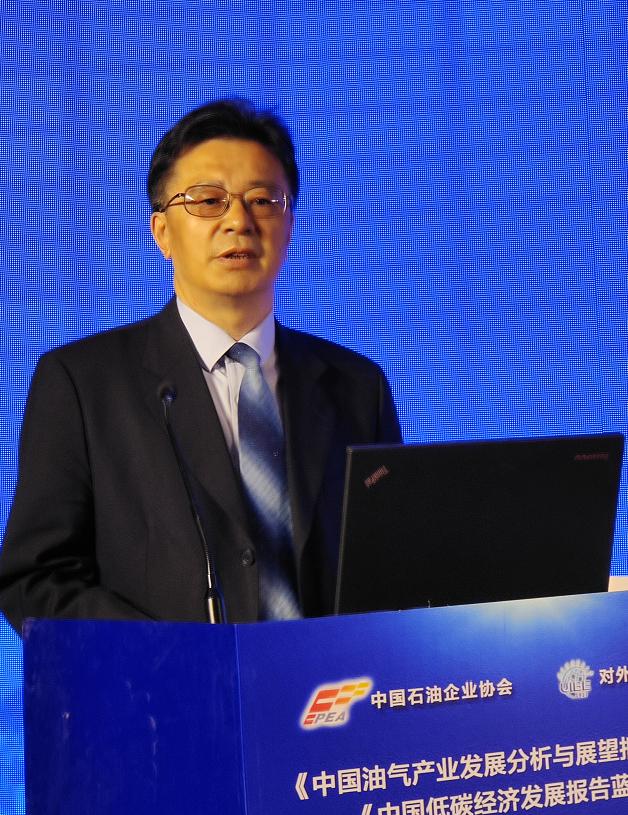 对话董秀成:《油气蓝皮书》助力中国油气产业发展