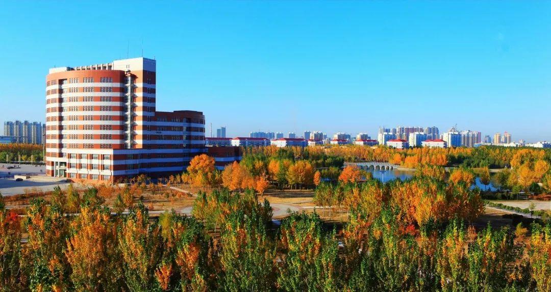 东北石油大学2022届毕业生生源信息!